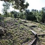 Hillside Trail 2